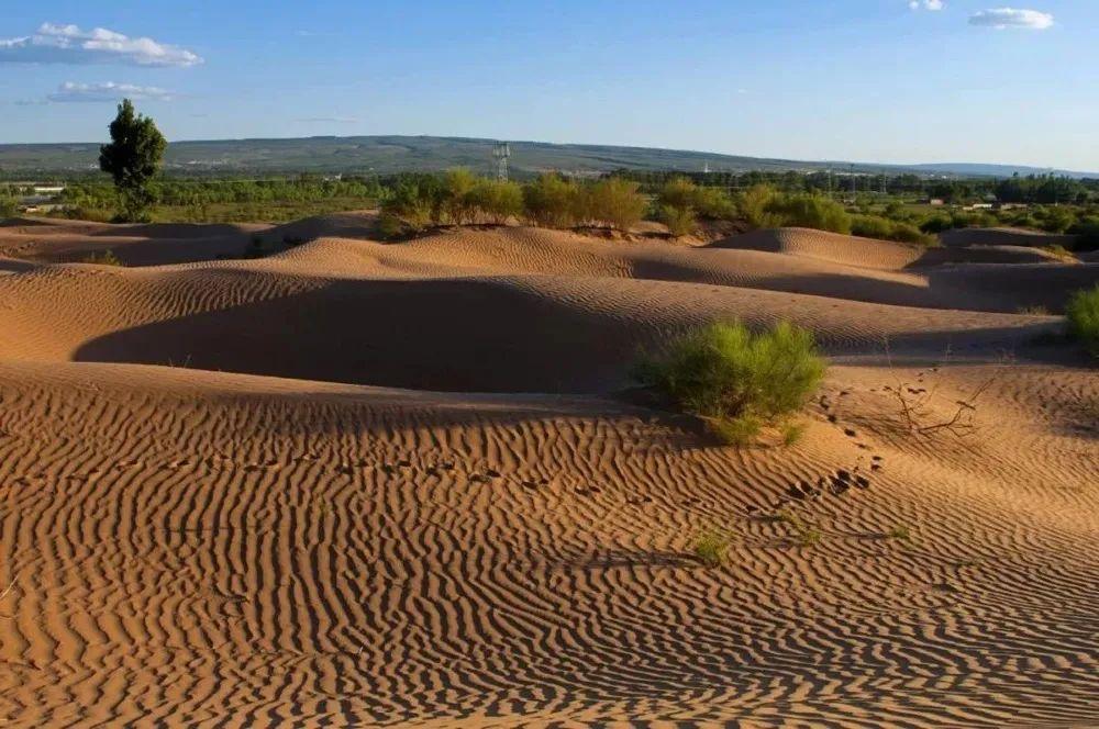今天植树节:中国绿化干掉了一整片沙漠!